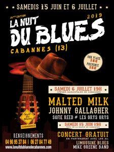Affiche de la Nuit du Blues de Cabannes 2019